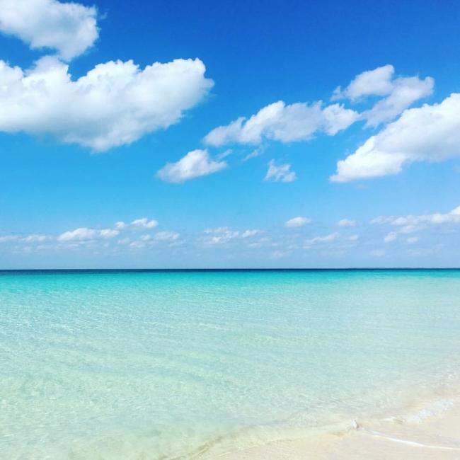 種子島の海